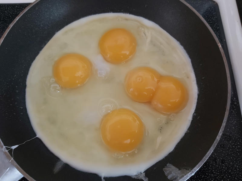 Eggs with double yolk